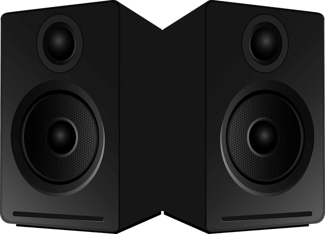 Home Theater speaker